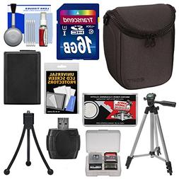 Sony LCS-BBF Soft Digital Camera Case  with NP-FW50 Battery